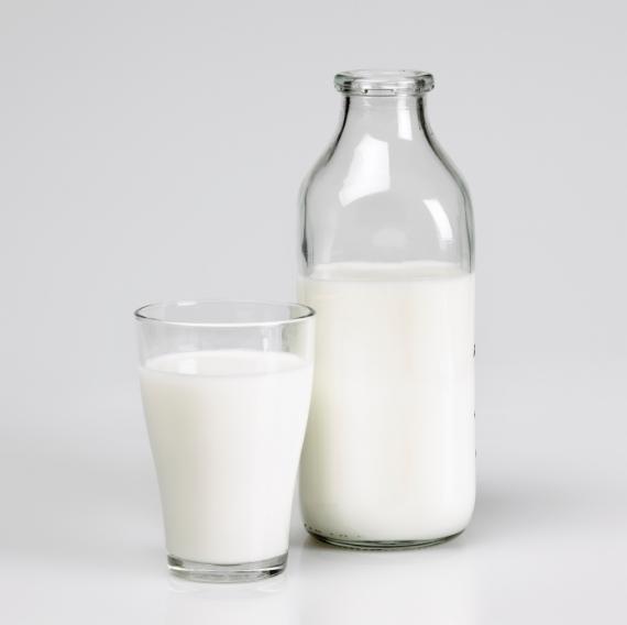 salvo por um copo com leite